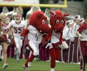 "Razorback fans love to see their mascots run ""Hog Wild"" on Arkansas gamedays!"