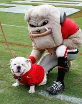 Dynamic Duo Uga and Hairy Dawg partner to fill the mascot role for the Georgia Bulldogs