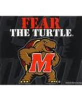 "Favorite expression at Maryland ""Fear the Turtle!"""