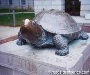 Testudo Statue TTestudo is the centerpiece of our campus, and the act of rubbing his nose for good luck is our most-enduring tradition, going strong since 1933!