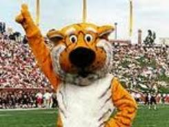 Missouri's Truman Tiger Mascot is easy to find since he's a regular at hundreds of Mizzou functions across the state.