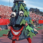 "Stanford University unofficial mascot ""The Tree"" adds spirit to gamedays at Stanford Stadium"