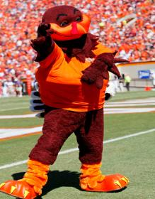School Mascot: The Hokie Bird A costumed turkey first graced the VT sidelines in 1936, but the tradition didn't develop on a full-time scale until the early 1960s. Since 1987, the Hokie.